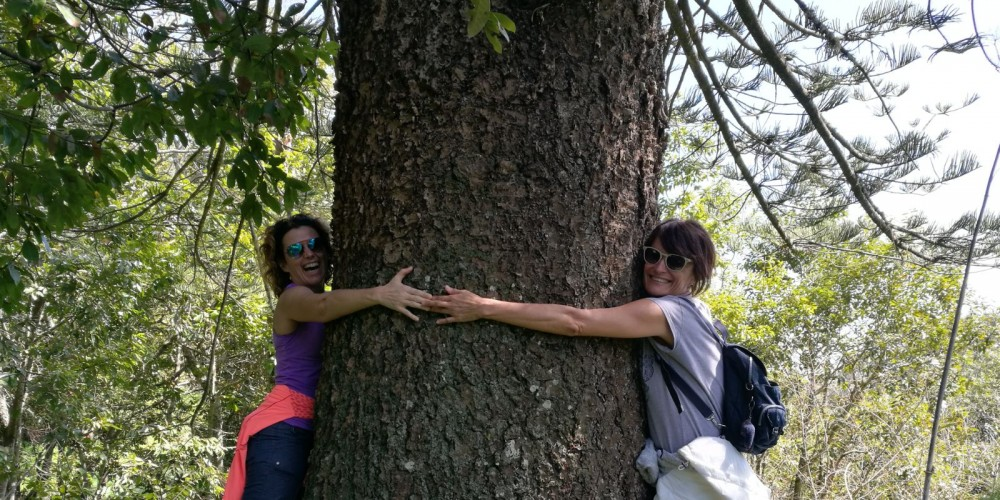 Guests of yoga retreat La Tejana hugging a tree