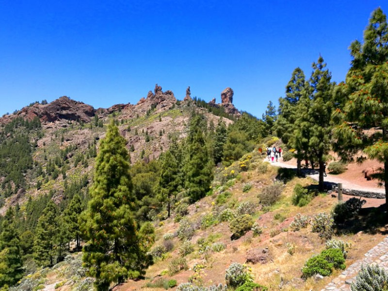 Views from the start of the road to Roque Nublo